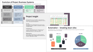 project business quick guide